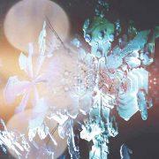 06 yunomi floracopia CD