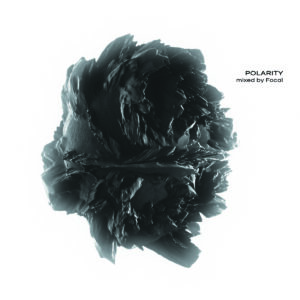 polarity mixed by focal CD