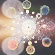 yunomi floracopia CD