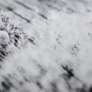 02 aes dana pollen CD