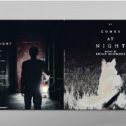 02 brian mcomber it comes at night vinyl lp