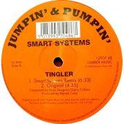 01 smart systems tingler 12 inch vinyl