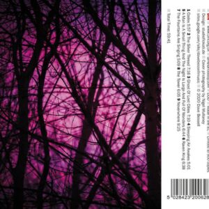 01 dave bessell reality engine CD din