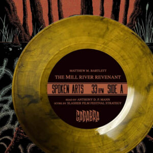 04 matthew bartlett the mill river revenant vinyl cadabra records