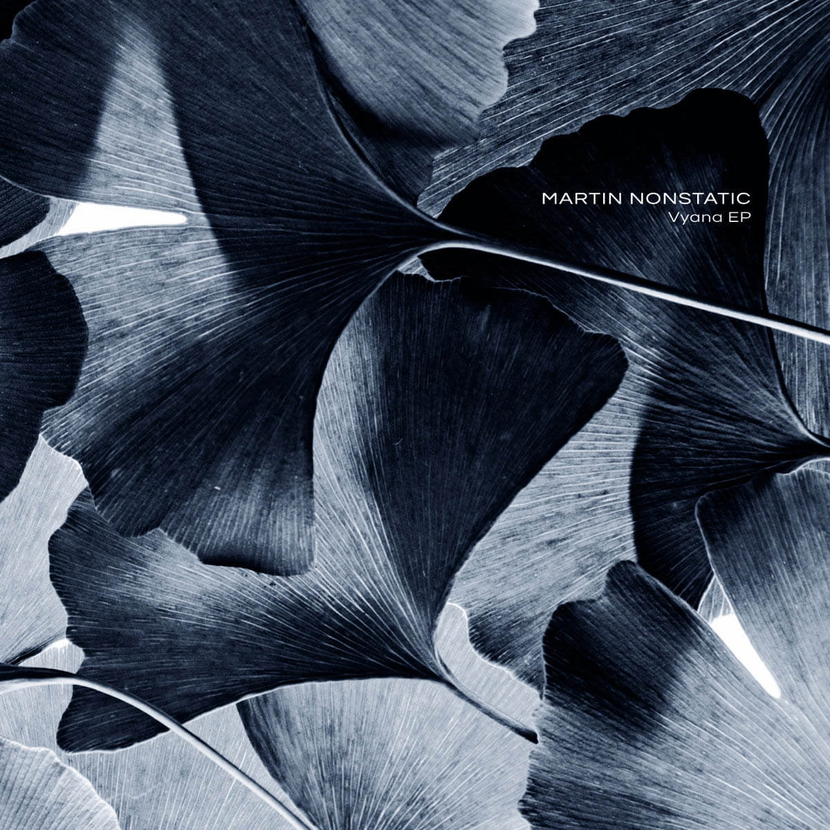 martin nonstatic vyana vinyl ep